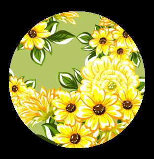 Sun Flower Bloom